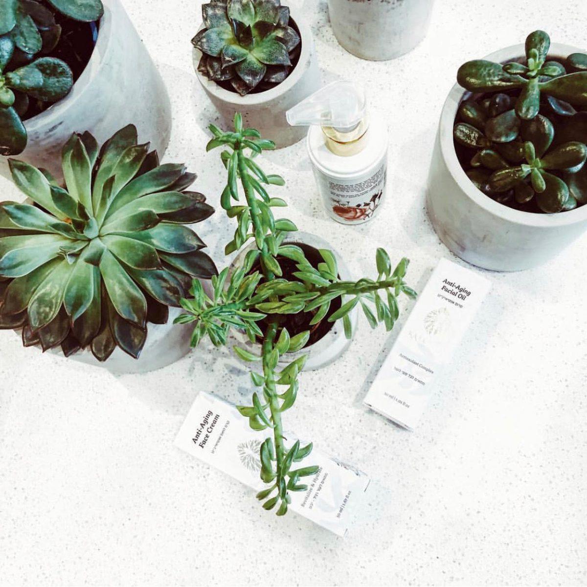Katerina Organic Skincare